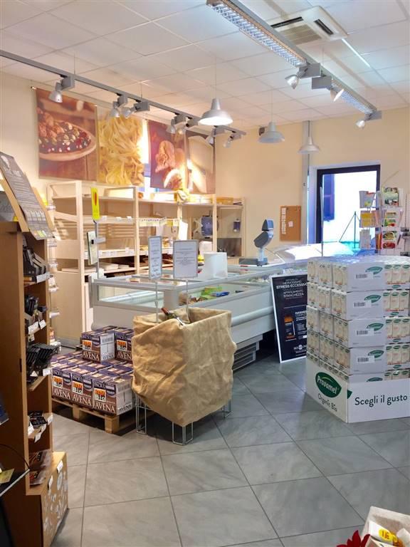Negozio / Locale in affitto a Sarzana, 4 locali, zona Località: STAZIONE, prezzo € 2.400 | Cambio Casa.it