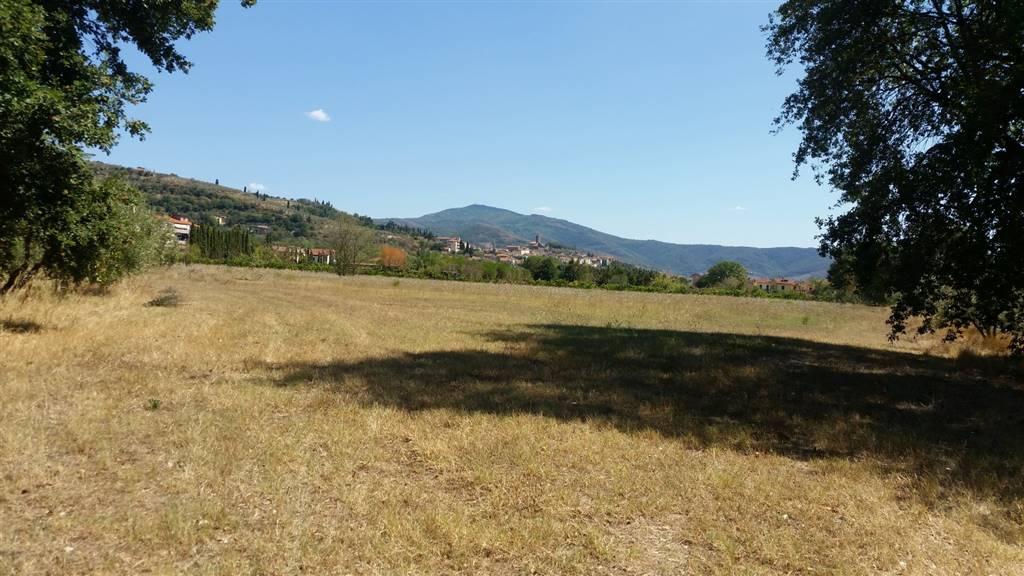 terreno edificabile  in Vendita a Castiglion Fiorentino