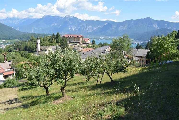 Terreno Edificabile Residenziale in vendita a Pergine Valsugana, 9999 locali, zona Località: SAN VITO, prezzo € 135.000 | Cambio Casa.it