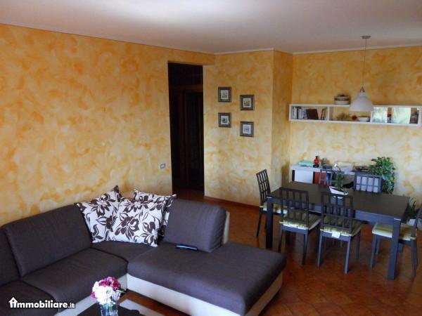 Appartamento Affitto Rio Saliceto