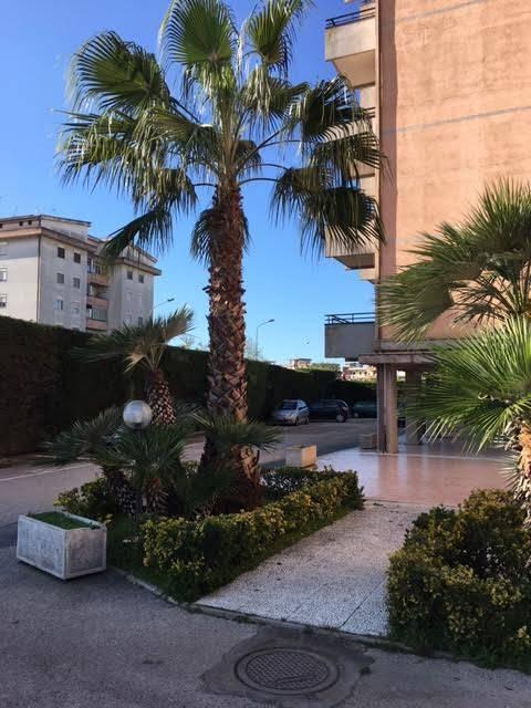 Cerca appartamenti a Scafati (Salerno) con Millevani
