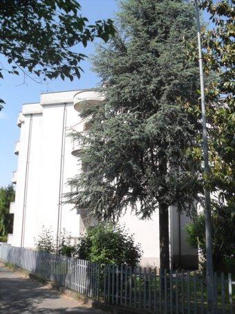 Appartamento in vendita a Casteggio, 4 locali, prezzo € 58.000 | Cambio Casa.it