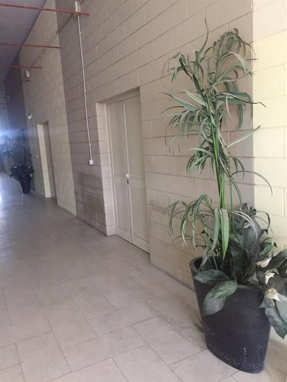 magazzino-deposito  in Affitto a Livorno