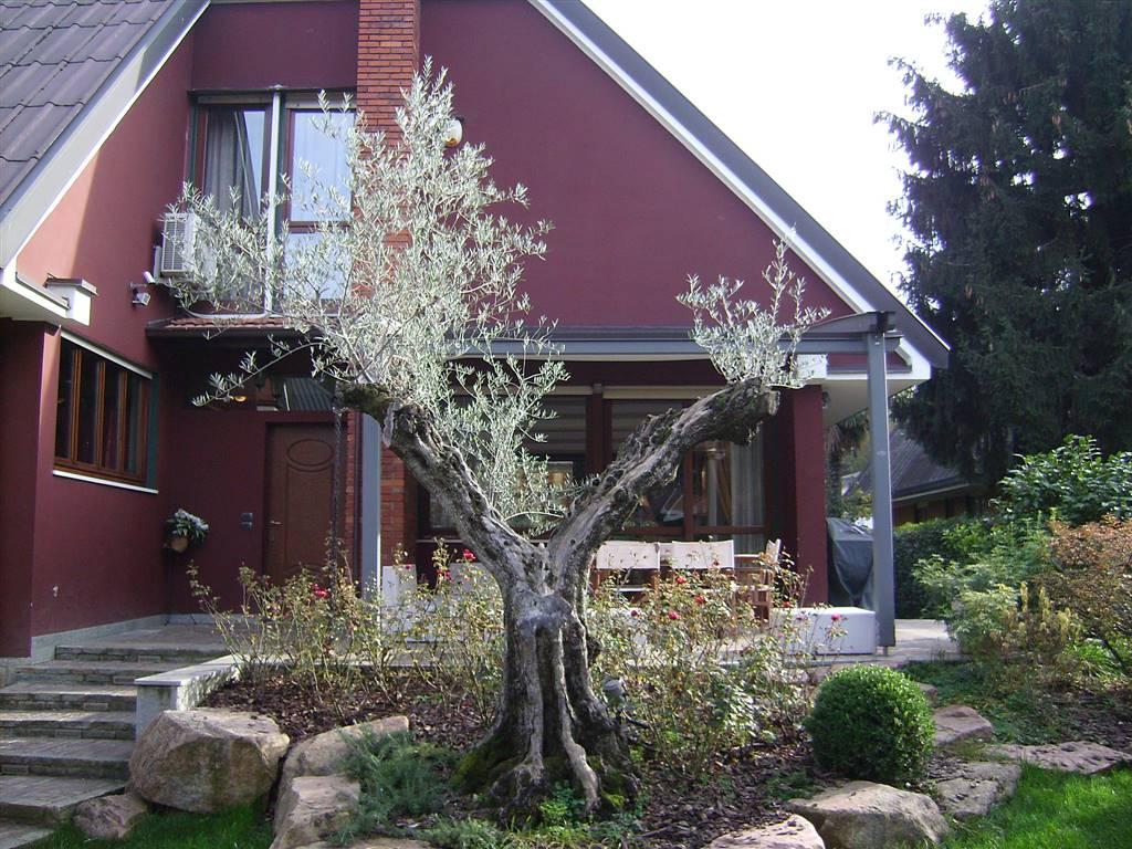 Villa in vendita a Brugherio, 8 locali, Trattative riservate | Cambio Casa.it