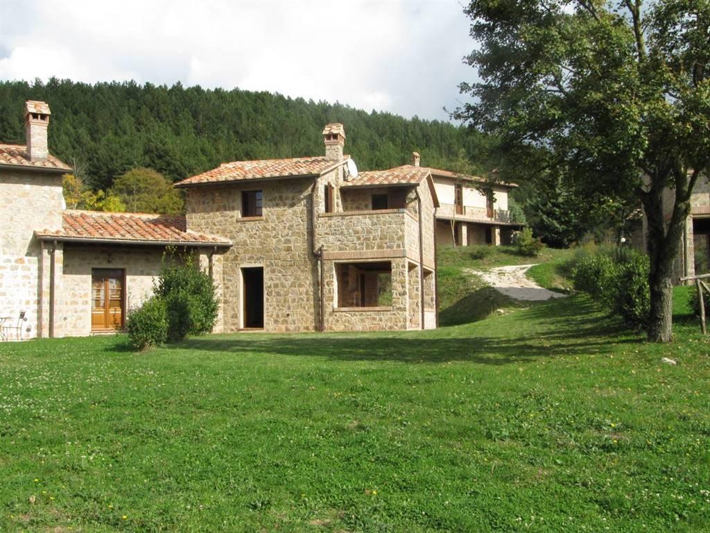 Soluzione Indipendente in vendita a Roccalbegna, 4 locali, prezzo € 350.000 | CambioCasa.it