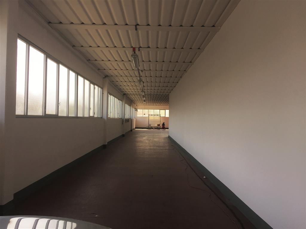 Laboratorio, Poggio a Caiano, abitabile