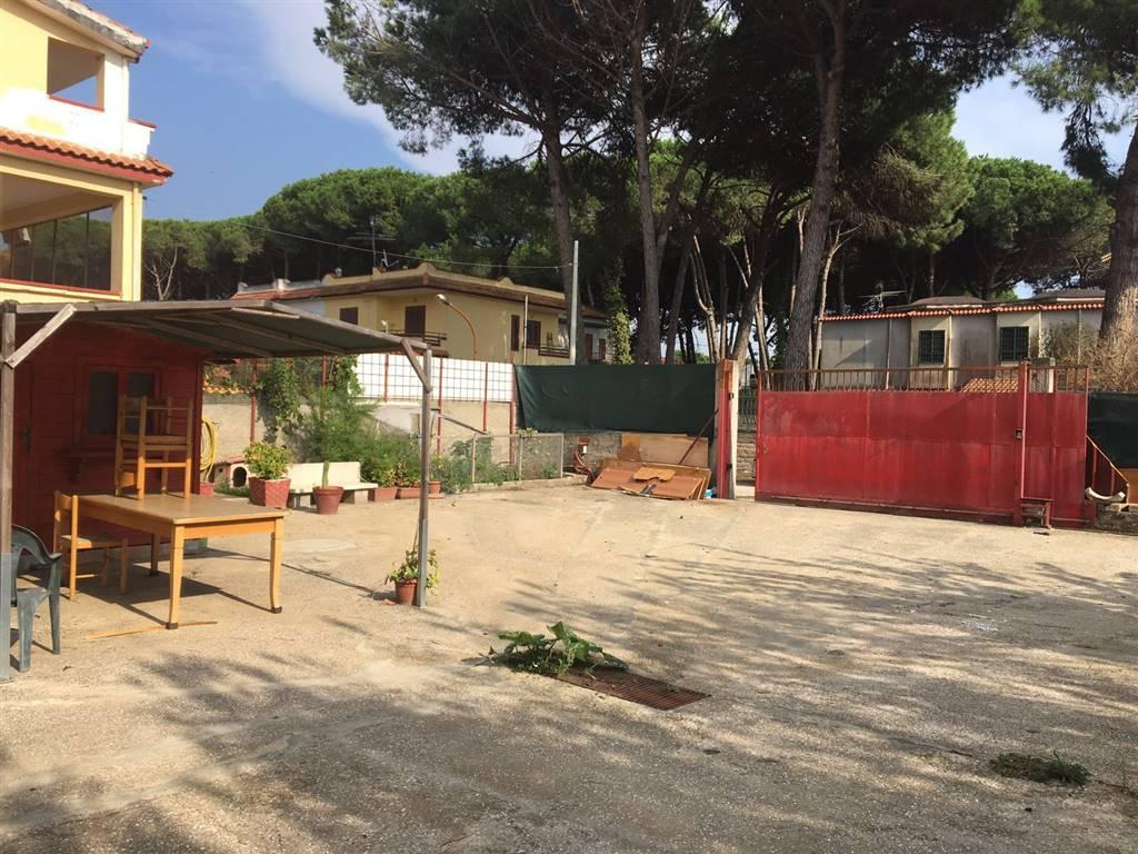 Terreno Agricolo in affitto a Castel Volturno, 9999 locali, zona Località: BAIA VERDE, prezzo € 300 | CambioCasa.it