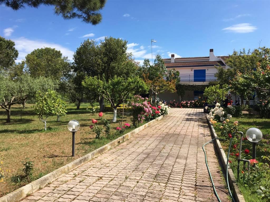 Villa in vendita a Castel Volturno, 9 locali, zona Località: CASTEL VOLTURNO PAESE/SCATOZZA, Trattative riservate | CambioCasa.it