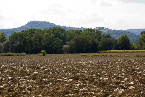 Terreno Agricolo in vendita a Monsano, 9999 locali, prezzo € 280.000 | Cambio Casa.it