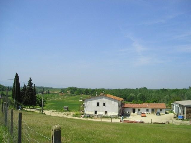 Azienda Agricola in Vendita a Terranuova Bracciolini