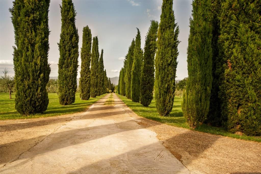 Rustico / Casale in vendita a Figline e Incisa Valdarno, 20 locali, zona Località: PONTE AGLI STOLLI, Trattative riservate | CambioCasa.it