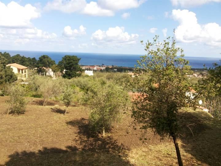 Terreno Agricolo in vendita a Messina, 9999 locali, prezzo € 18.000 | Cambiocasa.it