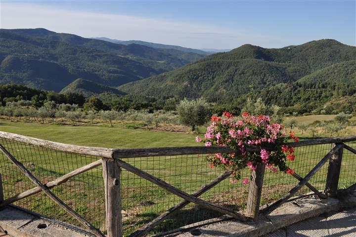 Soluzione Indipendente in vendita a Dicomano, 20 locali, zona Zona: Corella, prezzo € 1.800.000 | Cambio Casa.it