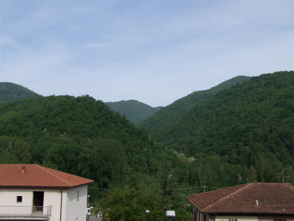 Appartamento in vendita a Rufina, 5 locali, zona Zona: Contea (Casini), prezzo € 170.000 | Cambio Casa.it