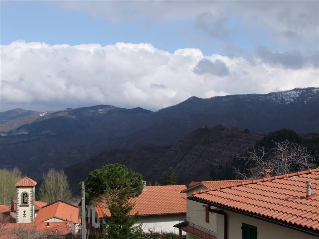 Appartamento in vendita a San Godenzo, 2 locali, zona Zona: Castagno d'Andrea, prezzo € 80.000 | Cambio Casa.it