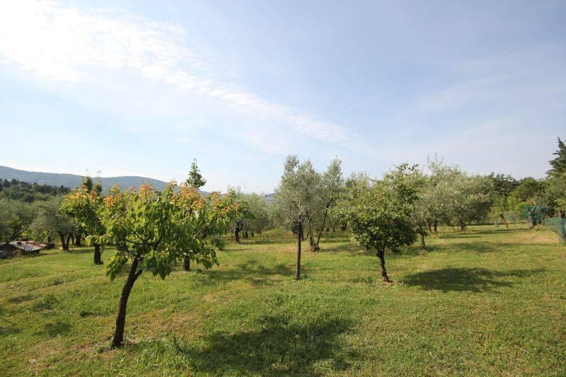 Terreno Agricolo in Vendita a Fiesole
