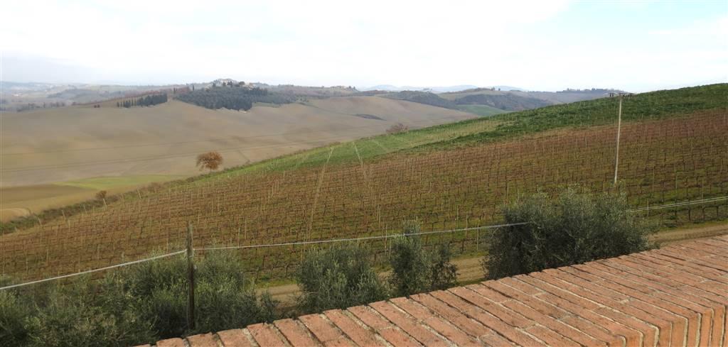 Azienda Agricola in vendita a Montalcino, 1 locali, Trattative riservate | Cambio Casa.it
