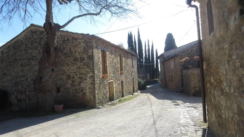 Azienda Agricola in vendita a Montalcino, 60 locali, Trattative riservate | CambioCasa.it