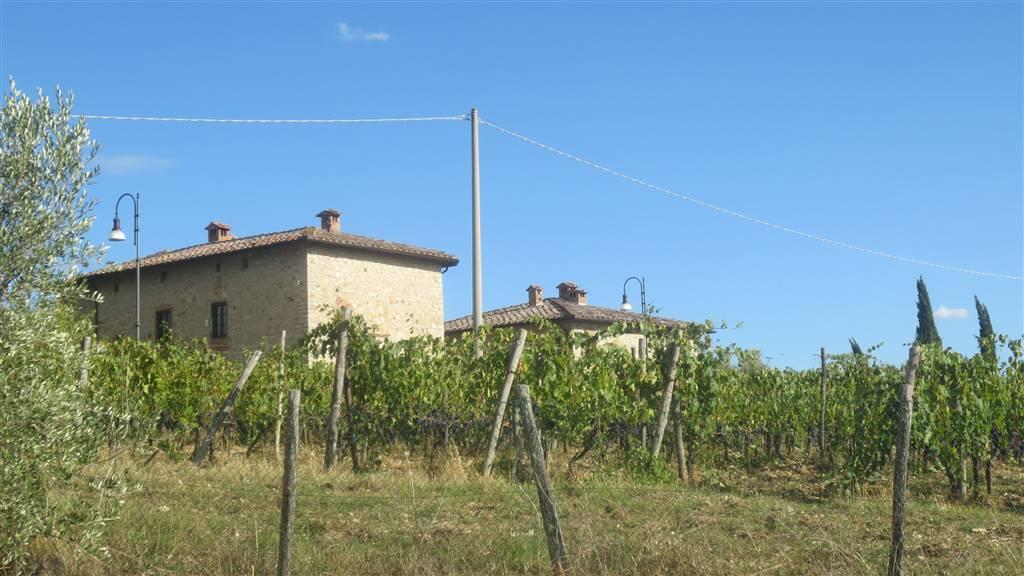 Rustico / Casale in Vendita a Gaiole in Chianti