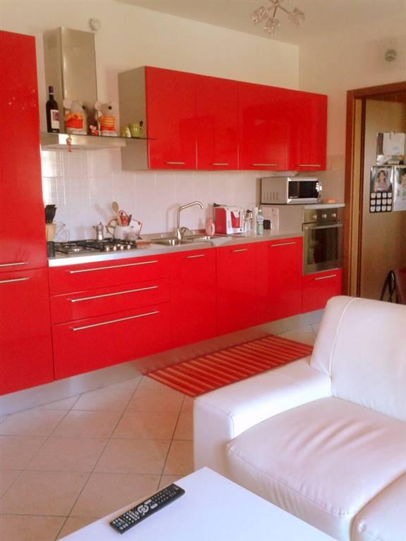 Appartamento in Vendita a Terrassa Padovana