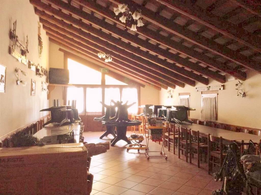 Agriturismo in vendita a Vo, 1 locali, zona Zona: Cortelà, prezzo € 1.100.000 | Cambio Casa.it
