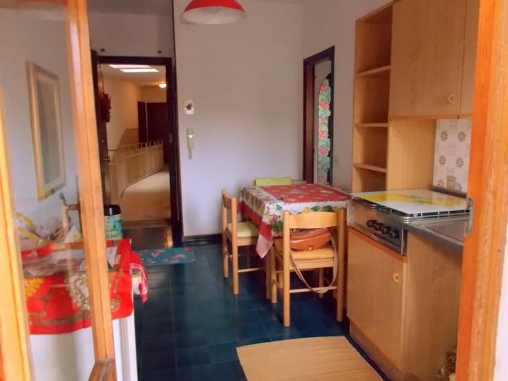 Appartamento in affitto a Padova, 2 locali, zona Zona: 2 . Nord (Arcella, S.Carlo, Pontevigodarzere), prezzo € 550 | Cambio Casa.it