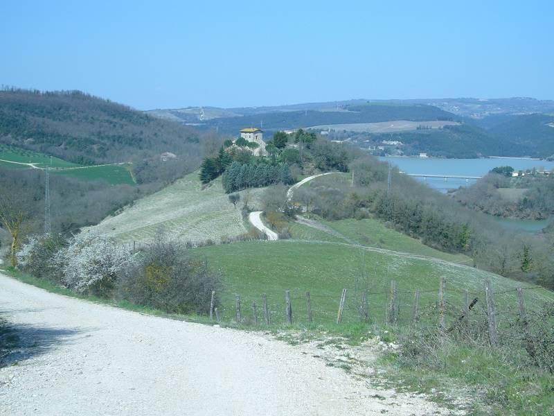 agriturismo-azienda agricola Vendita Montecchio