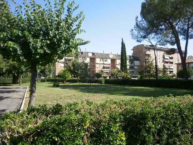 Attico / Mansarda in affitto a Grosseto, 1 locali, zona Località: GORARELLA, prezzo € 270 | Cambio Casa.it