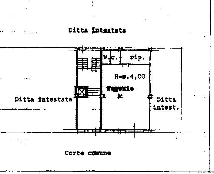 Attività / Licenza in Affitto a Grosseto