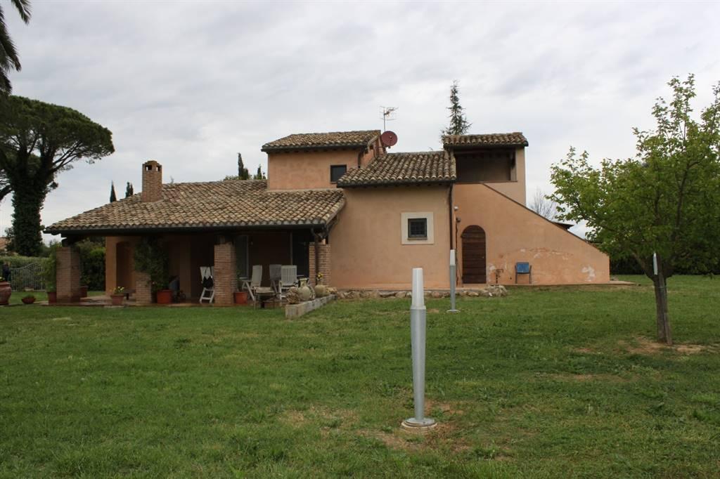 Villa in vendita a Grosseto, 7 locali, zona Zona: Braccagni, prezzo € 460.000   CambioCasa.it
