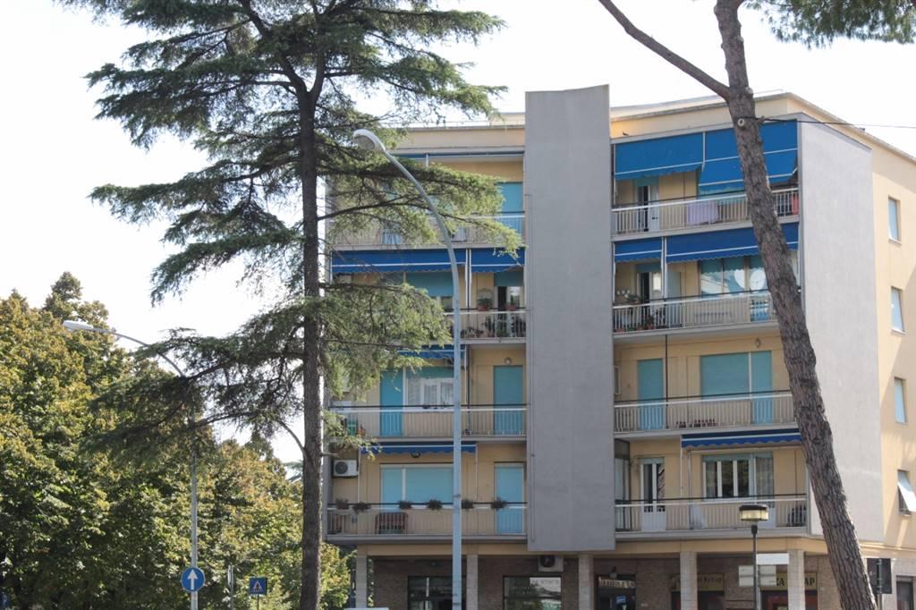 Appartamento in affitto a Grosseto, 4 locali, zona Località: CENTRO CITTÀ, prezzo € 500 | Cambio Casa.it