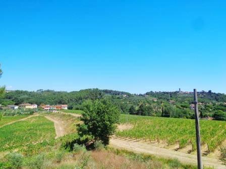 Rustico / Casale in vendita a Montecarlo, 5 locali, zona Zona: Micheloni, prezzo € 180.000 | Cambio Casa.it