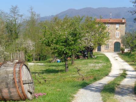 Appartamento in affitto a Capannori, 5 locali, prezzo € 650 | Cambio Casa.it