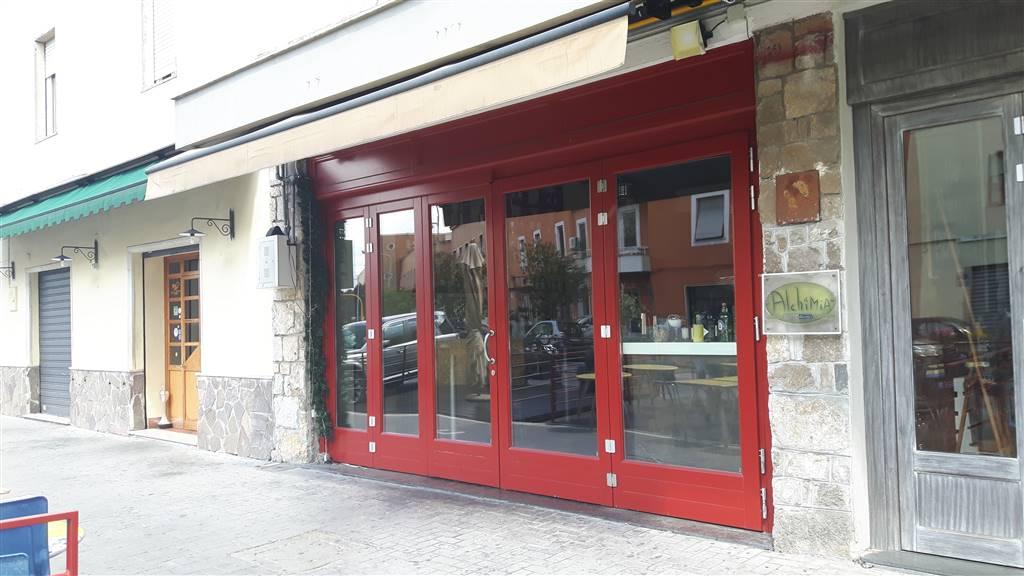 Ristorante / Pizzeria / Trattoria in Vendita a Latina