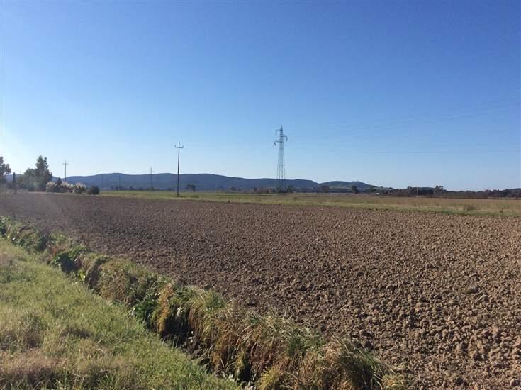 Terreno agricolo a CAMPIGLIA MARITTIMA