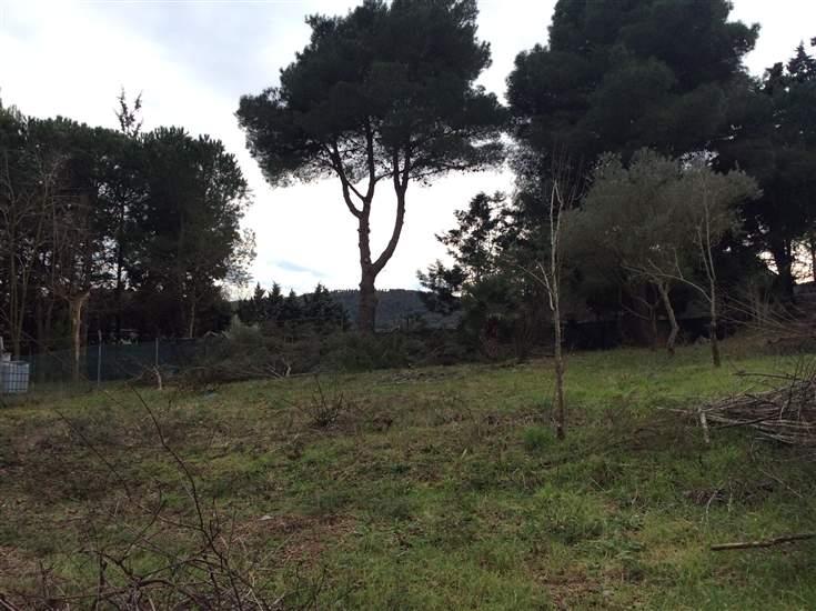 Altro in vendita a Piombino, 9999 locali, zona Zona: Baratti, prezzo € 38.000 | CambioCasa.it