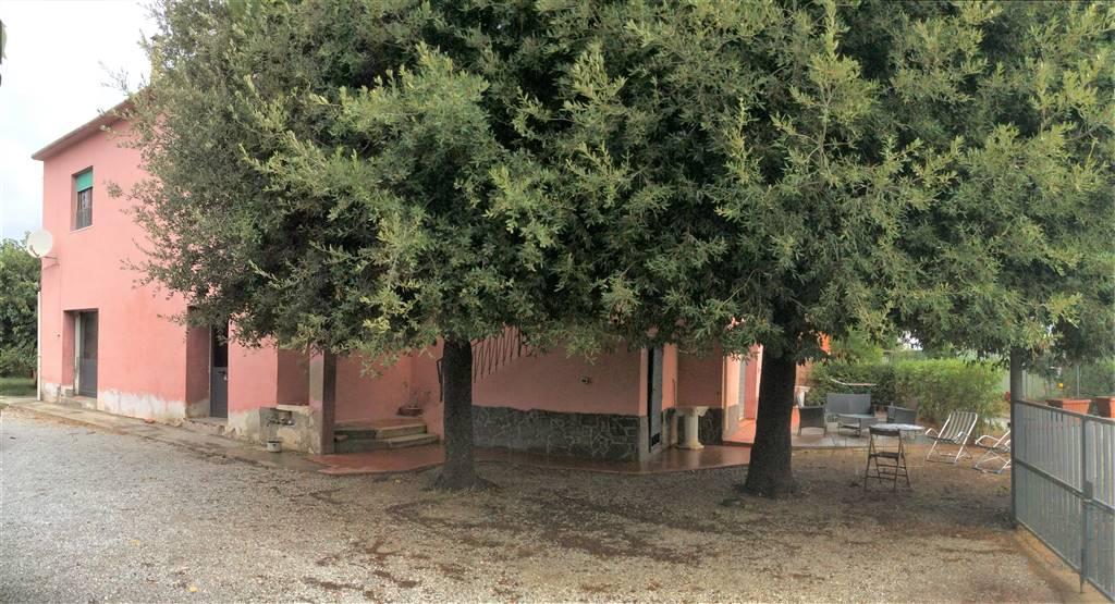 Casa semi indipendenteaCAMPIGLIA MARITTIMA