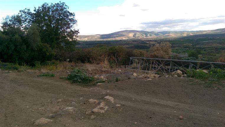 Terreno Edificabile Residenziale in vendita a Francofonte, 9999 locali, zona Località: C.DA QUADRI, prezzo € 40.000 | CambioCasa.it