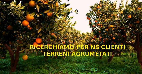 Terreno Agricolo in Vendita a Catania