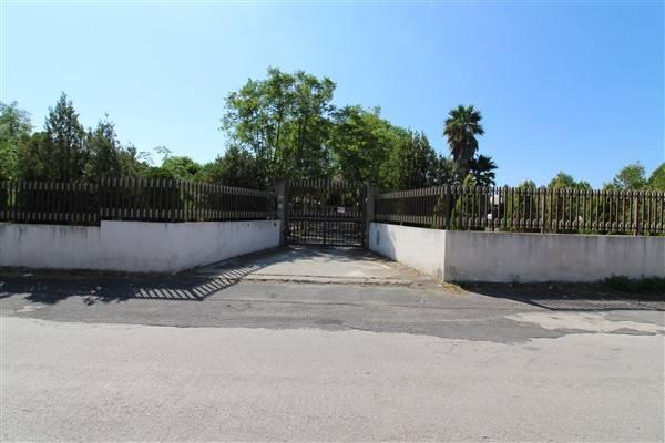 Villa in vendita a Francofonte, 8 locali, prezzo € 270.000 | CambioCasa.it