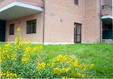 Appartamento in vendita a Fiano Romano, 2 locali, zona Località: CENTRO, Trattative riservate | CambioCasa.it