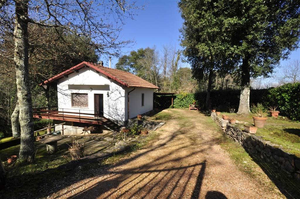 Villa sassetta vendita 80 mq for Giardino 80 mq