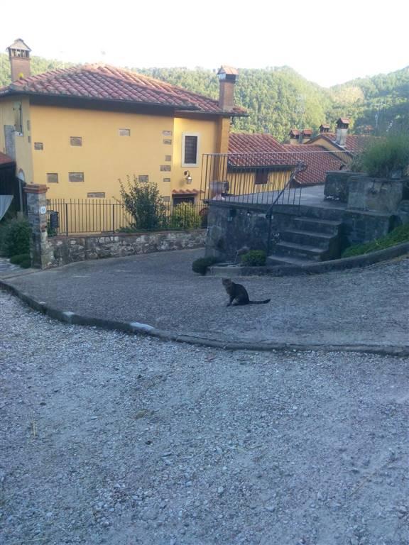 Soluzione Indipendente in vendita a Cantagallo, 10 locali, zona Zona: Migliana, Trattative riservate | CambioCasa.it