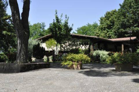 Albergo in vendita a Pitigliano, 9999 locali, zona Zona: Casone, prezzo € 1.000.000 | CambioCasa.it