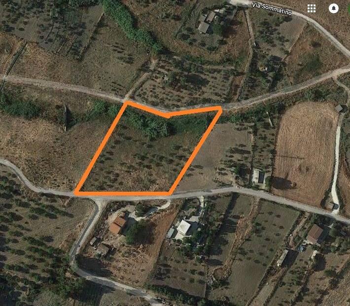 terreno  in Vendita a San Cataldo