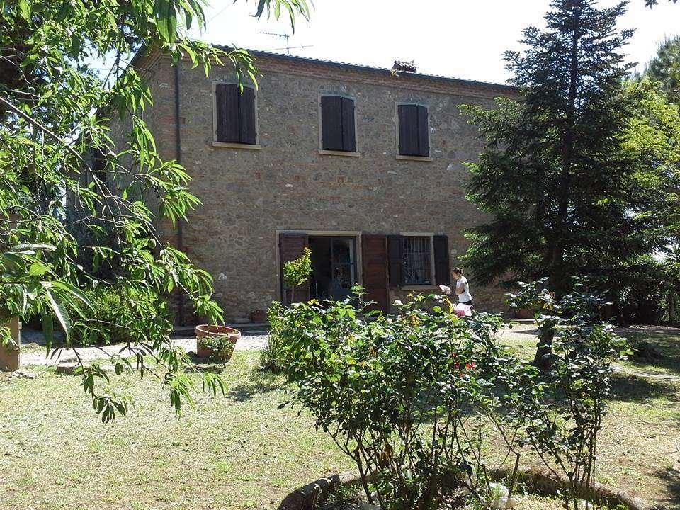 Rustico-casale  in Vendita a Cecina