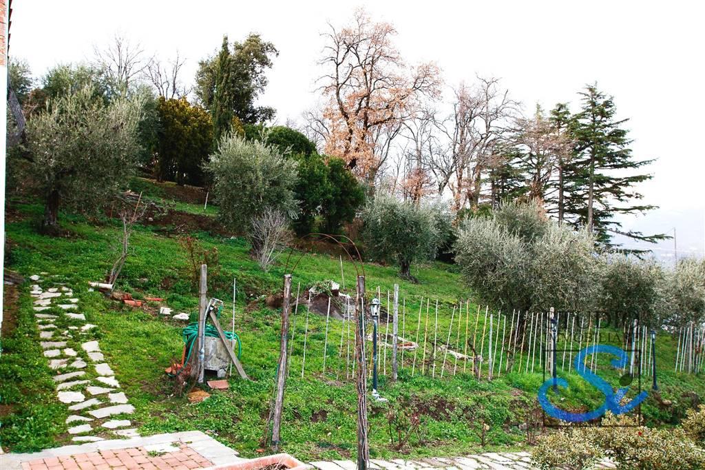Colonica - Sarripoli