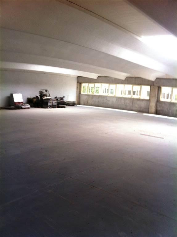 Capannone Industriale - Pistoia Sud