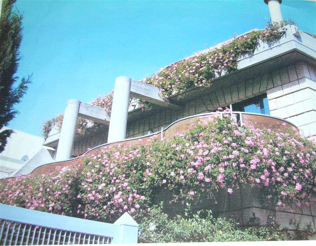 Villa in vendita a Canosa di Puglia, 8 locali, prezzo € 430.000 | CambioCasa.it