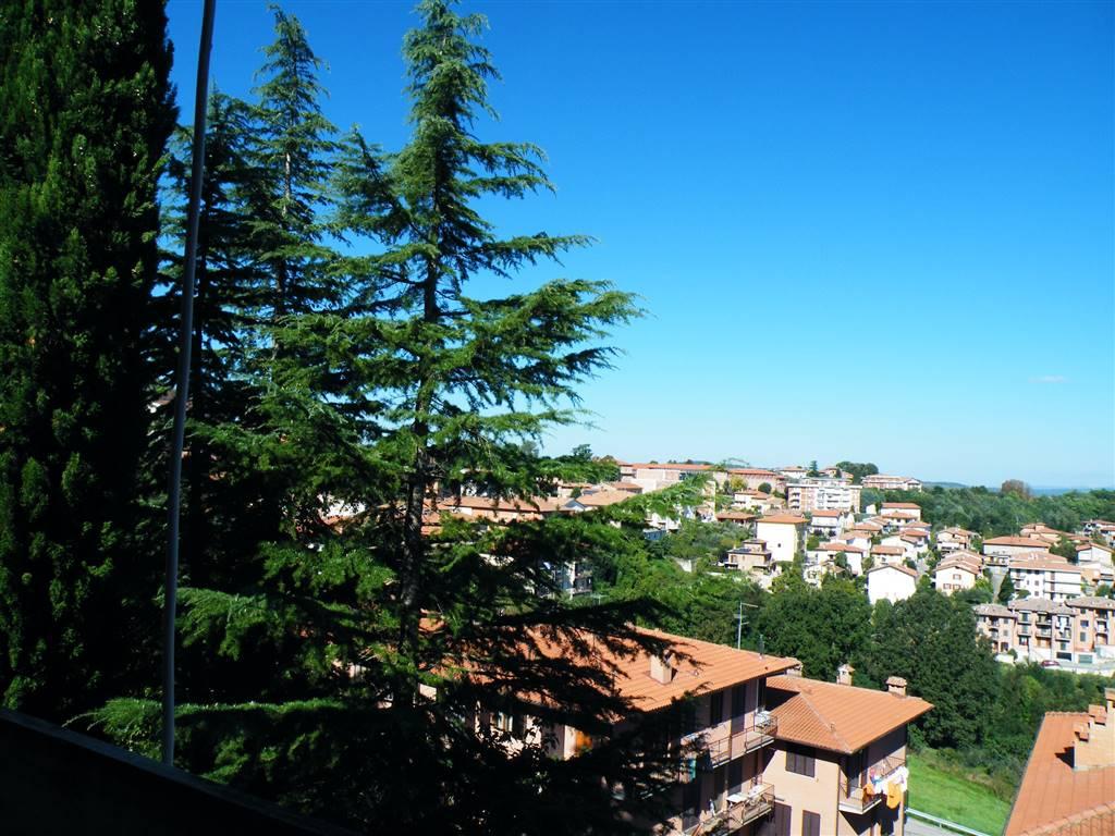 Soluzione Indipendente in vendita a Montepulciano, 12 locali, zona Zona: Montepulciano Capoluogo, prezzo € 480.000 | CambioCasa.it